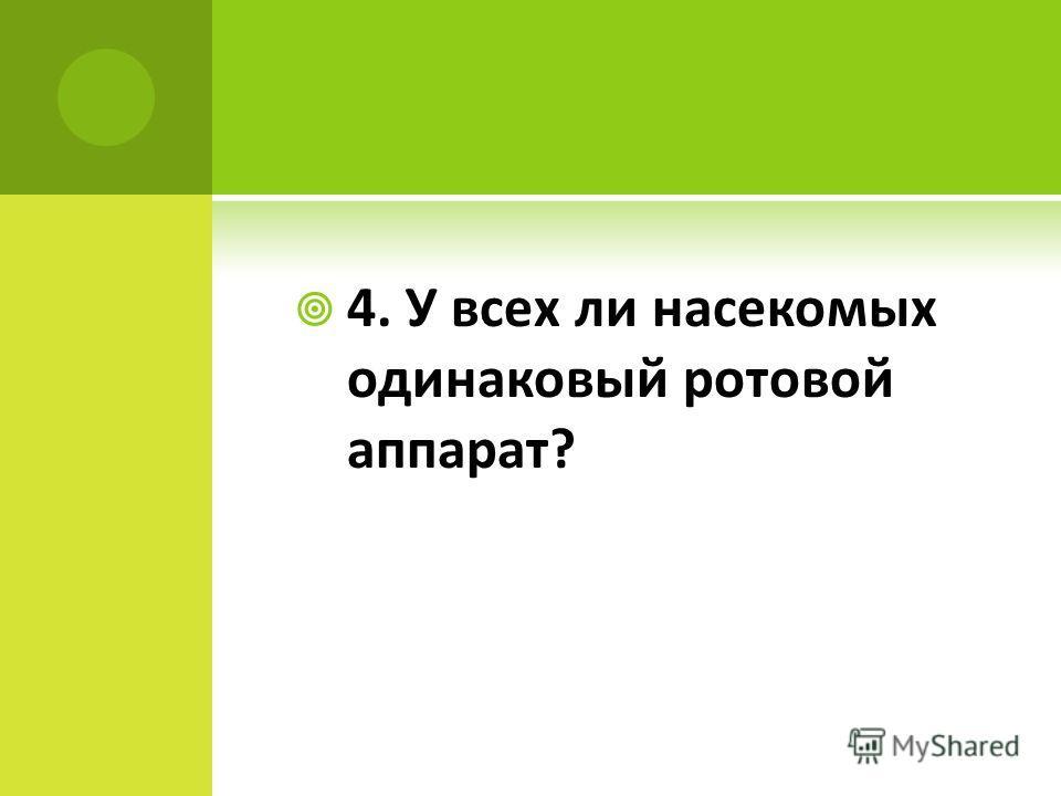 4. У всех ли насекомых одинаковый ротовой аппарат?