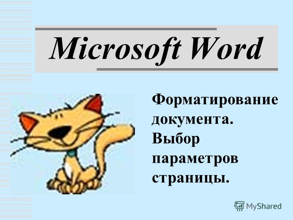 Microsoft Word Форматирование документа. Выбор параметров страницы.
