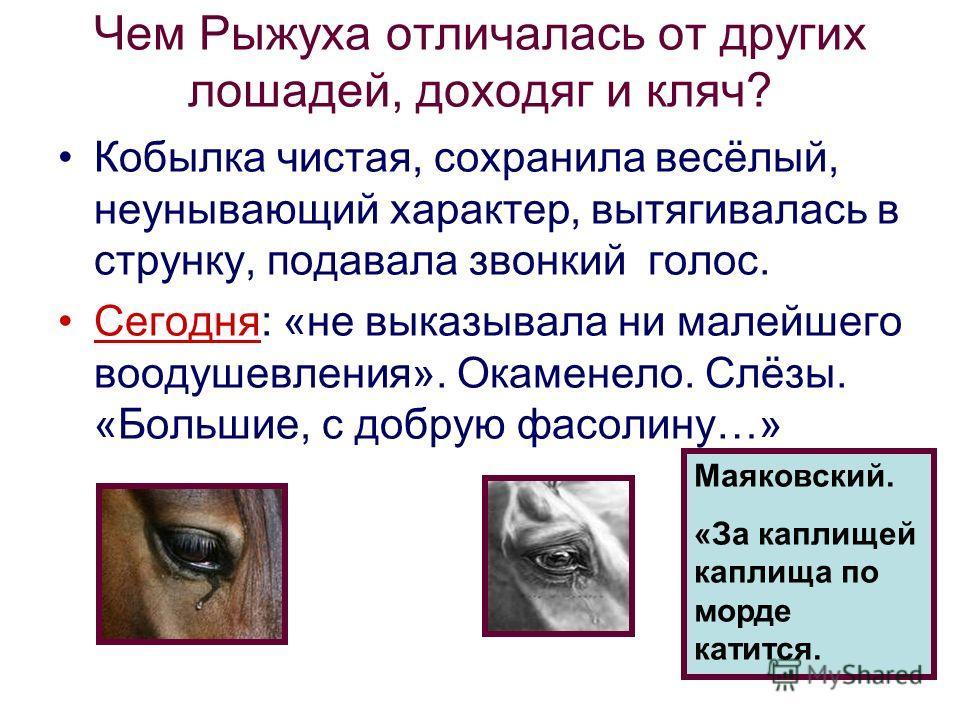Чем Рыжуха отличалась от других лошадей, доходяг и кляч? Кобылка чистая, сохранила весёлый, неунывающий характер, вытягивалась в струнку, подавала звонкий голос. Сегодня: «не выказывала ни малейшего воодушевления». Окаменело. Слёзы. «Большие, с добру