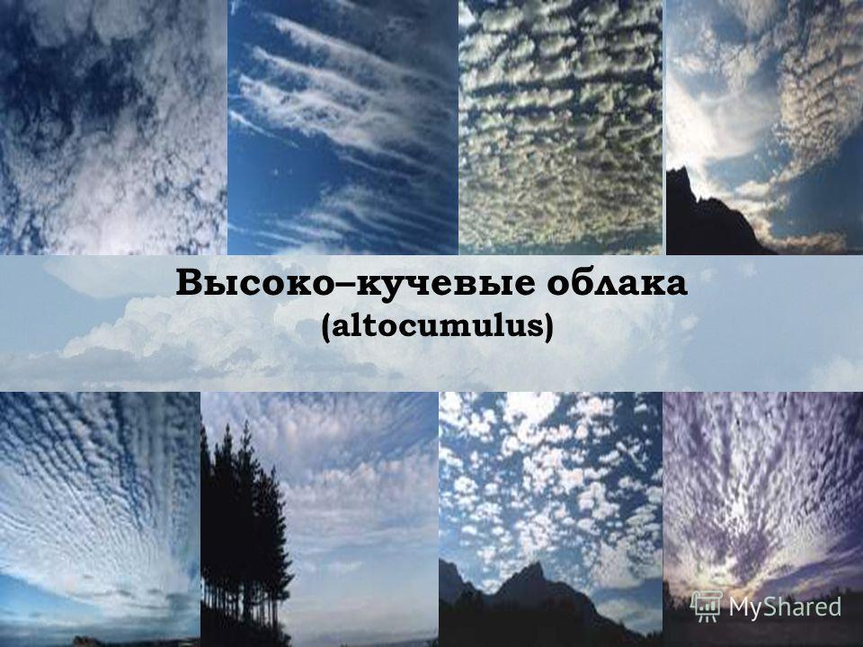 Высоко–кучевые облака (altocumulus)