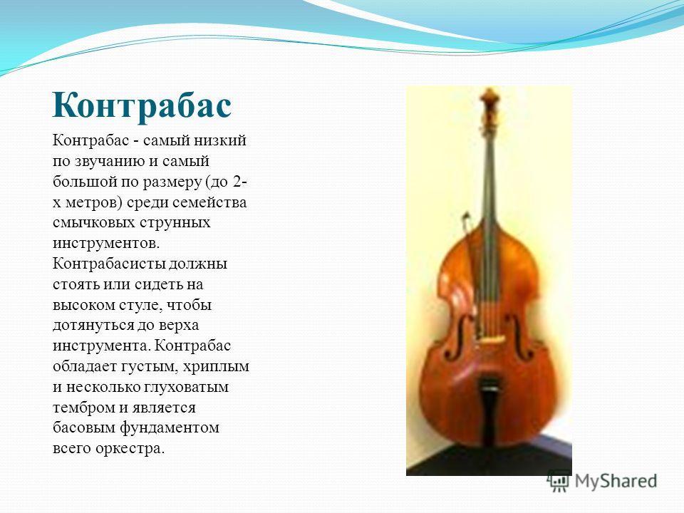 Контрабас Контрабас - самый низкий по звучанию и самый большой по размеру (до 2- х метров) среди семейства смычковых струнных инструментов. Контрабасисты должны стоять или сидеть на высоком стуле, чтобы дотянуться до верха инструмента. Контрабас обла
