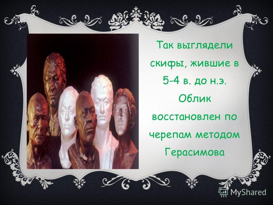 Так выглядели скифы, жившие в 5-4 в. до н.э. Облик восстановлен по черепам методом Герасимова