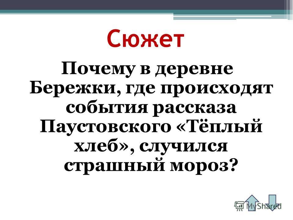 Сюжет Почему в деревне Бережки, где происходят события рассказа Паустовского «Тёплый хлеб», случился страшный мороз?