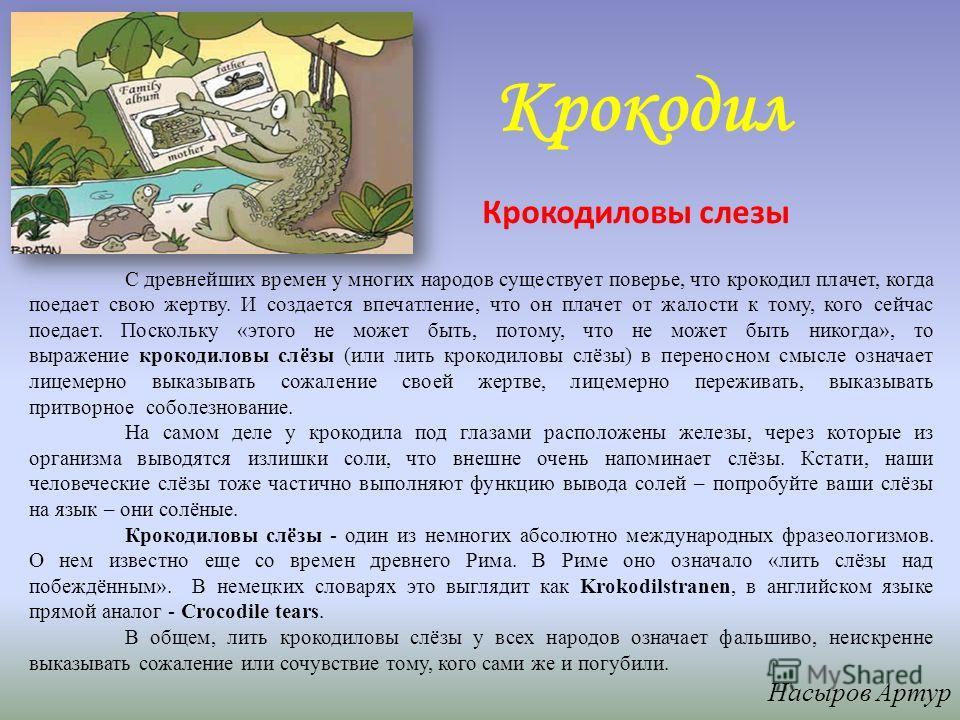 Крокодил С древнейших времен у многих народов существует поверье, что крокодил плачет, когда поедает свою жертву. И создается впечатление, что он плачет от жалости к тому, кого сейчас поедает. Поскольку «этого не может быть, потому, что не может быть