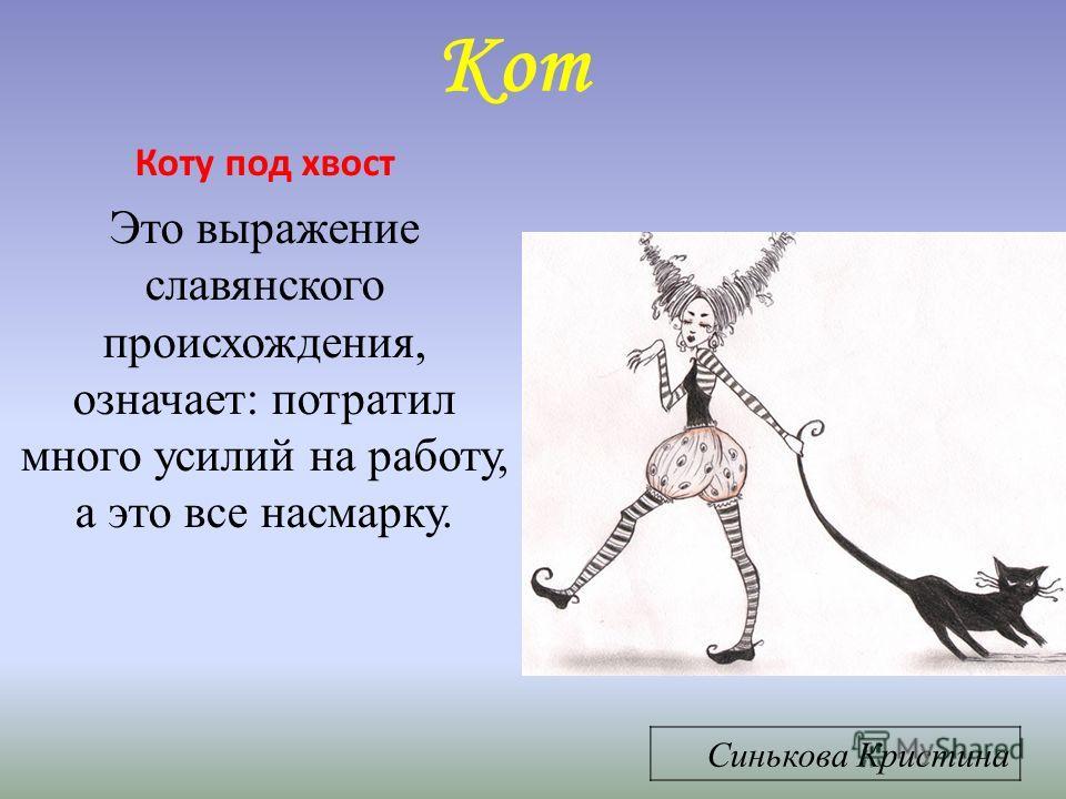 Кот Коту под хвост Это выражение славянского происхождения, означает: потратил много усилий на работу, а это все насмарку. Синькова Кристина