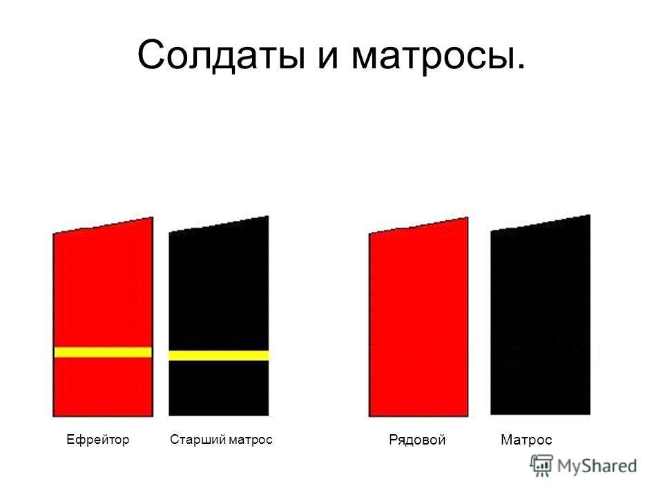 Состав военнослужащих и воинские звания в Вооруженных Силах Российской Федерации.