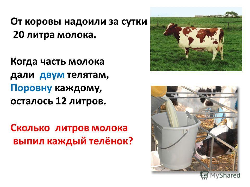 От коровы надоили за сутки 20 литра молока. Когда часть молока дали двум телятам, Поровну каждому, осталось 12 литров. Сколько литров молока выпил каждый телёнок?