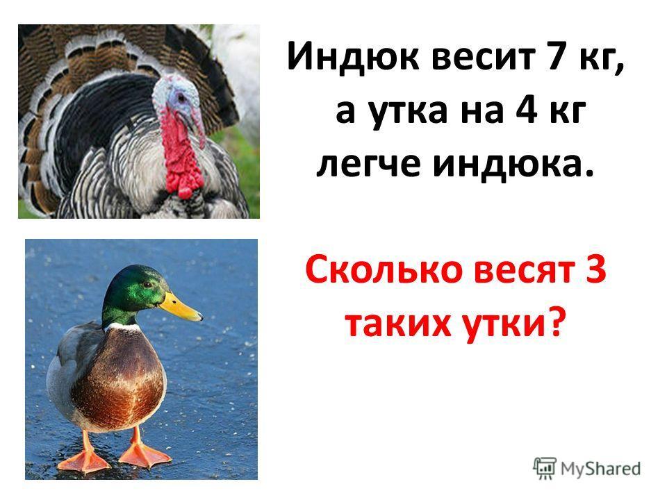Индюк весит 7 кг, а утка на 4 кг легче индюка. Сколько весят 3 таких утки?
