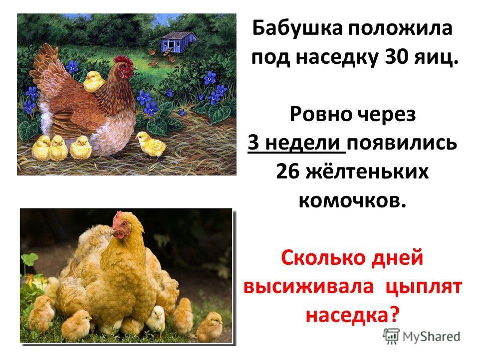 Бабушка положила под наседку 30 яиц. Ровно через 3 недели появились 26 жёлтеньких комочков. Сколько дней высиживала цыплят наседка?