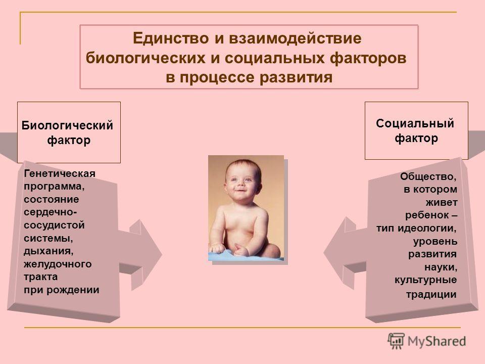 Единство и взаимодействие биологических и социальных факторов в процессе развития Биологический фактор Социальный фактор Генетическая программа, состояние сердечно- сосудистой системы, дыхания, желудочного тракта при рождении Общество, в котором живе