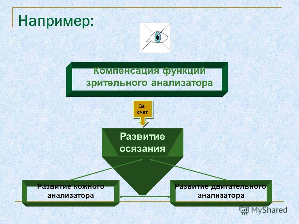 Например: Компенсация функций зрительного анализатора Развитие осязания За счет За счет Развитие кожного анализатора Развитие двигательного анализатора