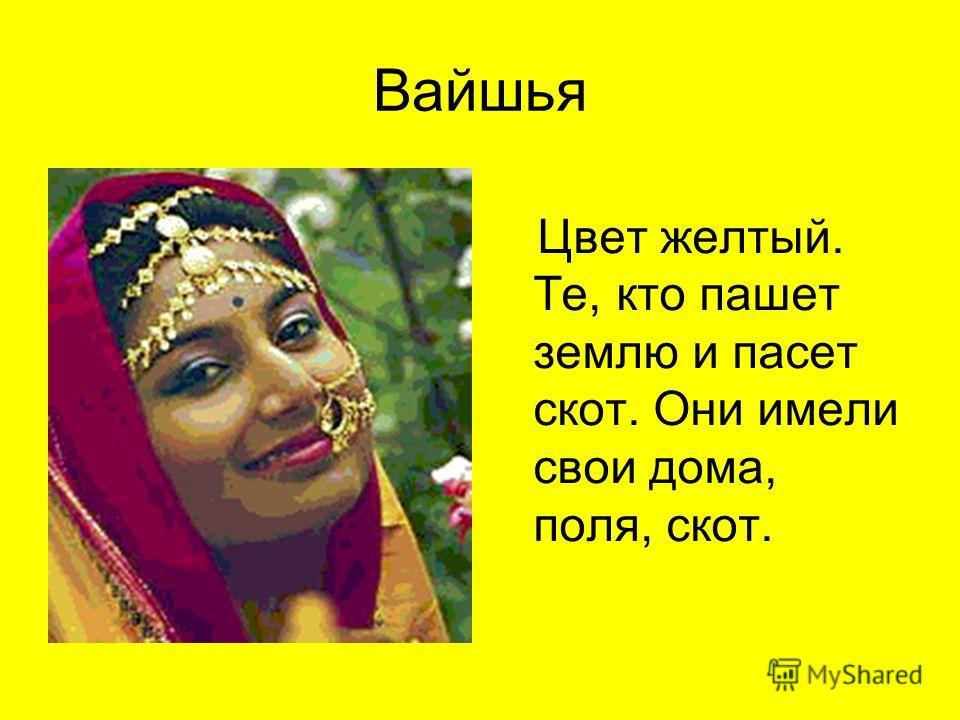 Вайшья Цвет желтый. Те, кто пашет землю и пасет скот. Они имели свои дома, поля, скот.