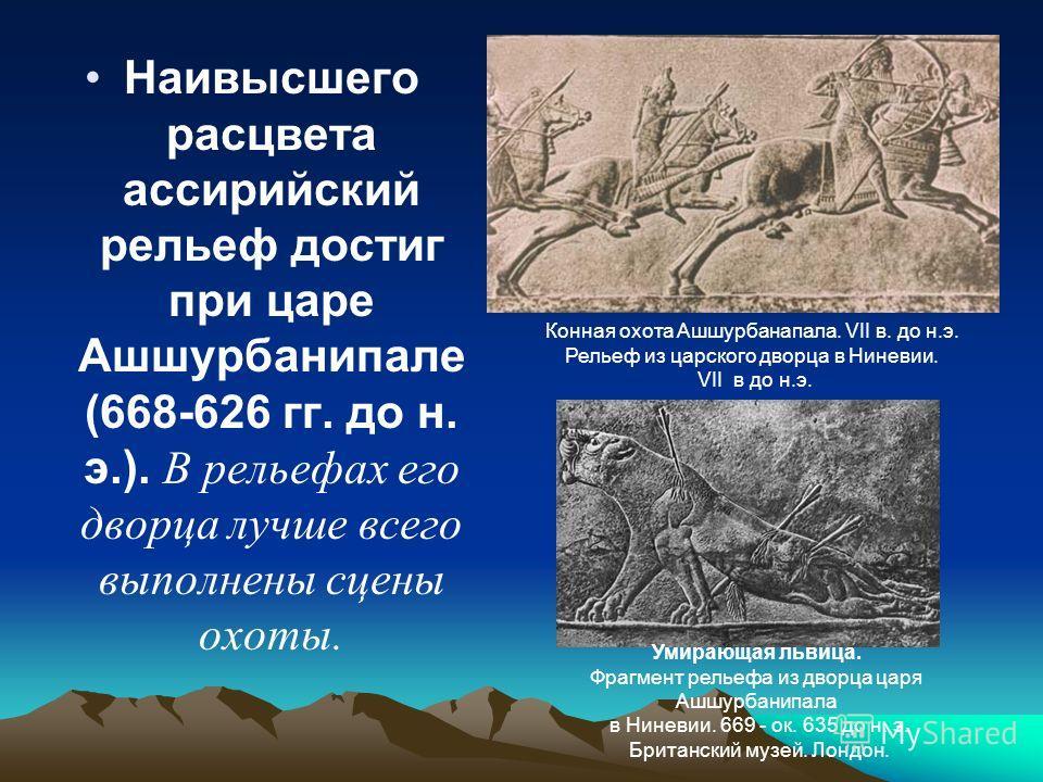 Наивысшего расцвета ассирийский рельеф достиг при царе Ашшурбанипале (668-626 гг. до н. э.). В рельефах его дворца лучше всего выполнены сцены охоты. Конная охота Ашшурбанапала. VII в. до н.э. Рельеф из царского дворца в Ниневии. VII в до н.э. Умираю