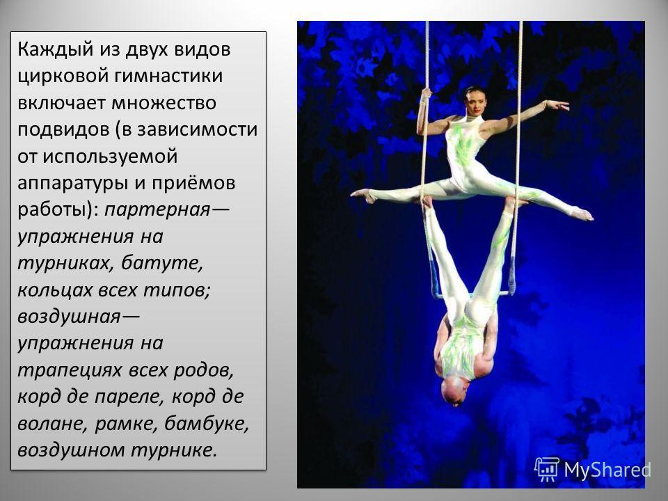 Каждый из двух видов цирковой гимнастики включает множество подвидов (в зависимости от используемой аппаратуры и приёмов работы): партерная упражнения на турниках, батуте, кольцах всех типов; воздушная упражнения на трапециях всех родов, корд де паре