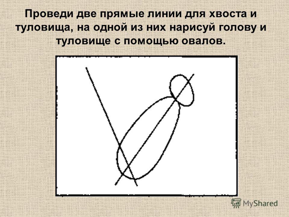 Проведи две прямые линии для хвоста и туловища, на одной из них нарисуй голову и туловище с помощью овалов.