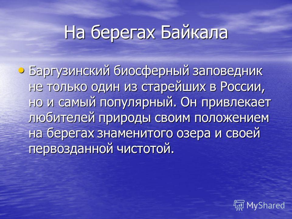 На берегах Байкала Баргузинский биосферный заповедник не только один из старейших в России, но и самый популярный. Он привлекает любителей природы своим положением на берегах знаменитого озера и своей первозданной чистотой. Баргузинский биосферный за