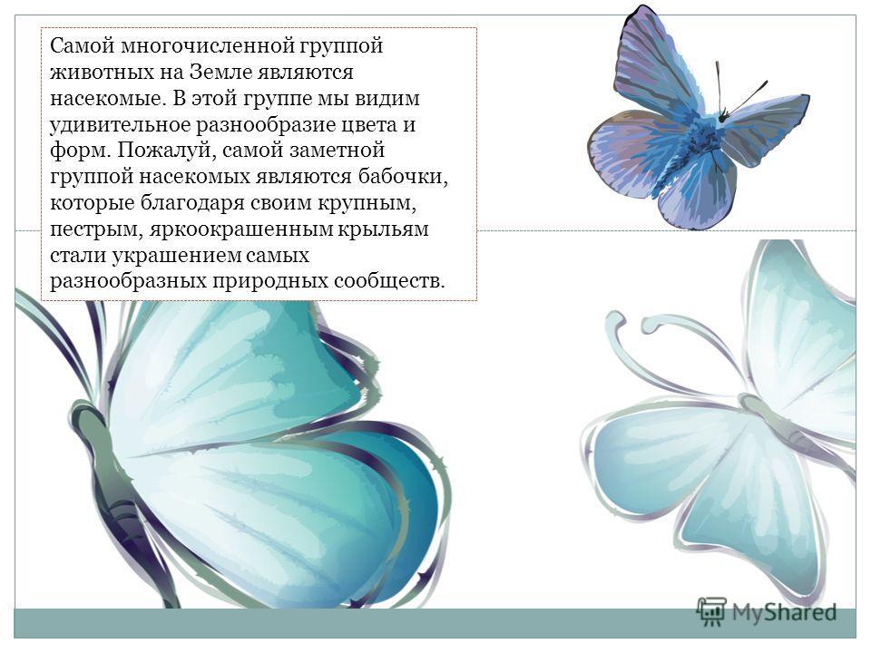 Самой многочисленной группой животных на Земле являются насекомые. В этой группе мы видим удивительное разнообразие цвета и форм. Пожалуй, самой заметной группой насекомых являются бабочки, которые благодаря своим крупным, пестрым, яркоокрашенным кры