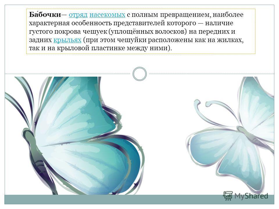 Бабочки отряд насекомых с полным превращением, наиболее характерная особенность представителей которого наличие густого покрова чешуек (уплощённых волосков) на передних и задних крыльях (при этом чешуйки расположены как на жилках, так и на крыловой п