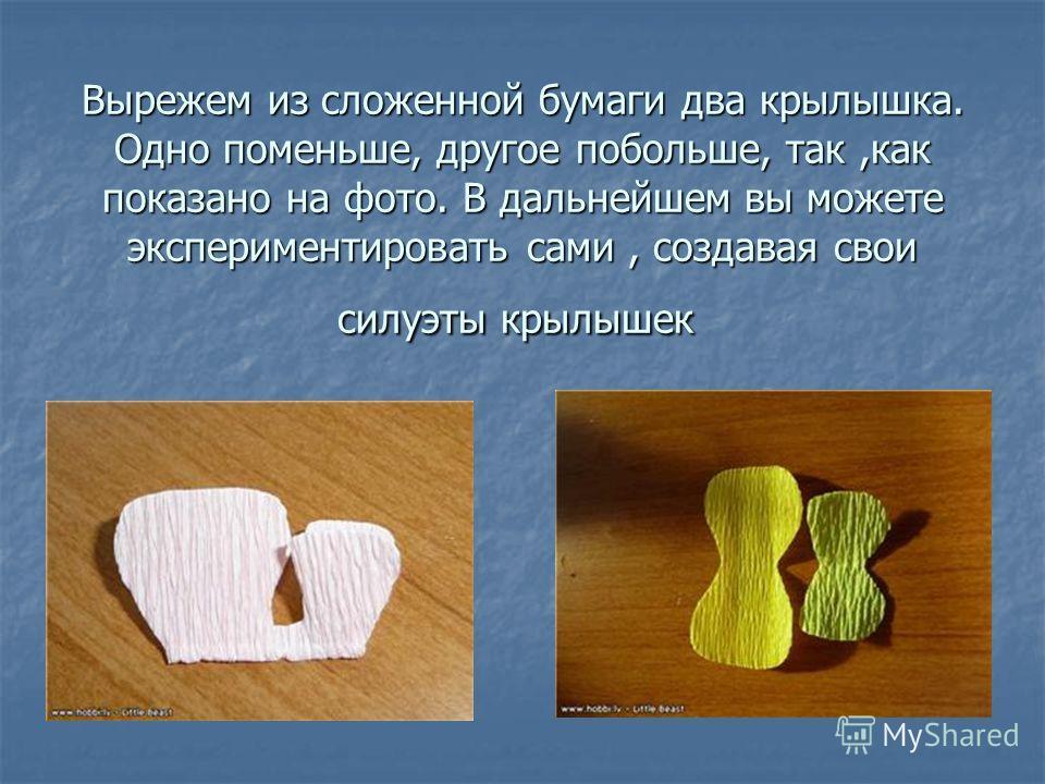 Вырежем из сложенной бумаги два крылышка. Одно поменьше, другое побольше, так,как показано на фото. В дальнейшем вы можете экспериментировать сами, создавая свои силуэты крылышек Вырежем из сложенной бумаги два крылышка. Одно поменьше, другое побольш