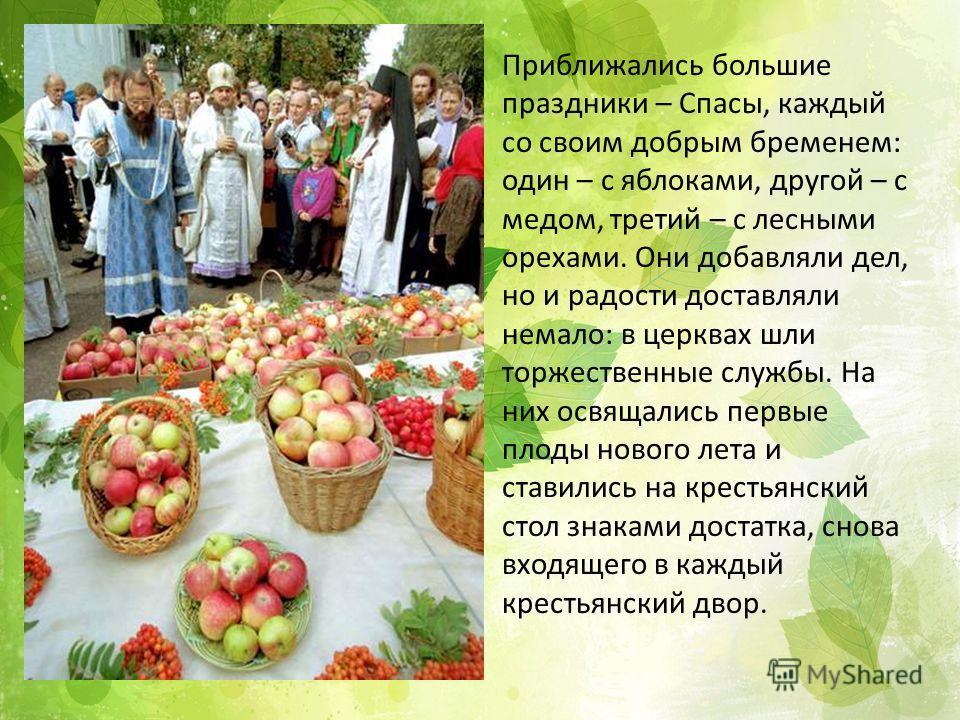 Приближались большие праздники – Спасы, каждый со своим добрым бременем: один – с яблоками, другой – с медом, третий – с лесными орехами. Они добавляли дел, но и радости доставляли немало: в церквах шли торжественные службы. На них освящались первые