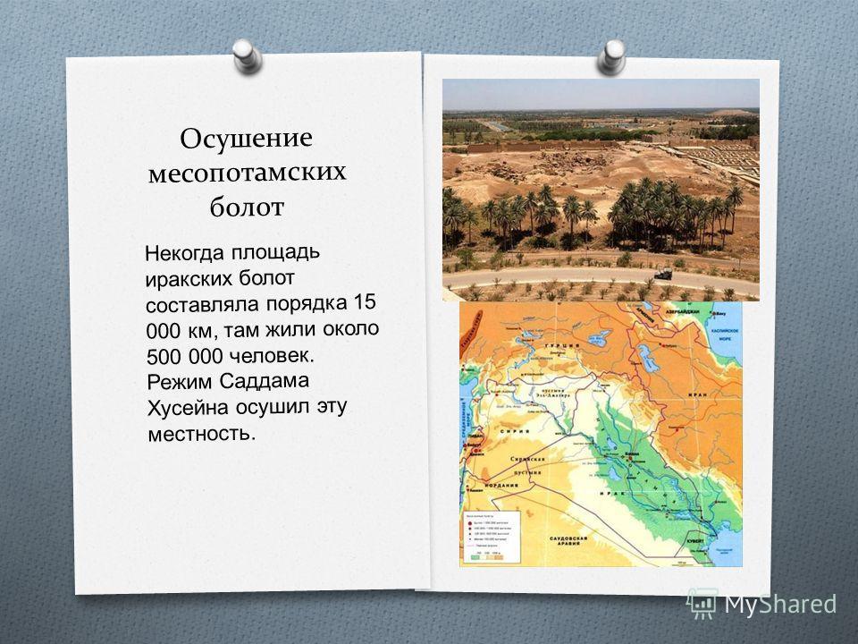 Осушение месопотамских болот Некогда площадь иракских болот составляла порядка 15 000 км, там жили около 500 000 человек. Режим Саддама Хусейна осушил эту местность.