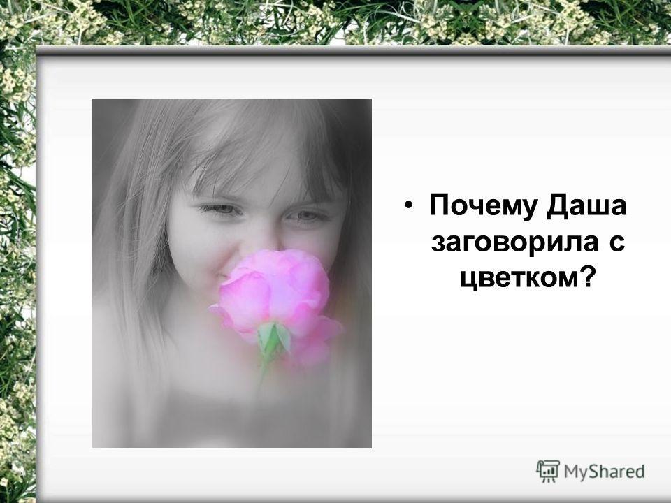 Почему Даша заговорила с цветком?