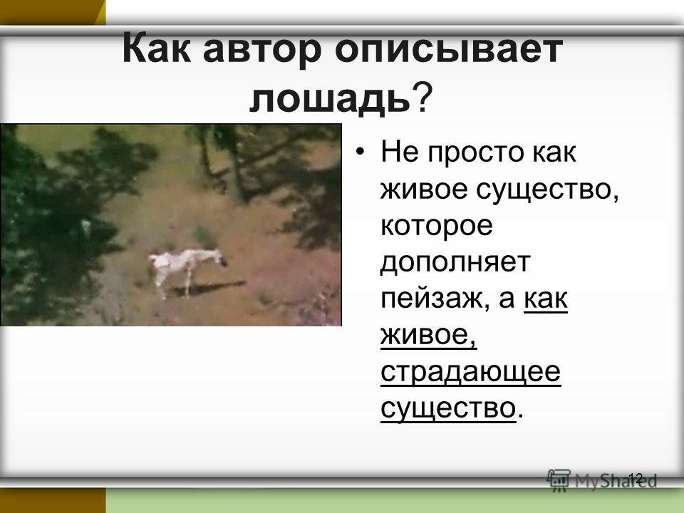 Как автор описывает лошадь? Не просто как живое существо, которое дополняет пейзаж, а как живое, страдающее существо. 12