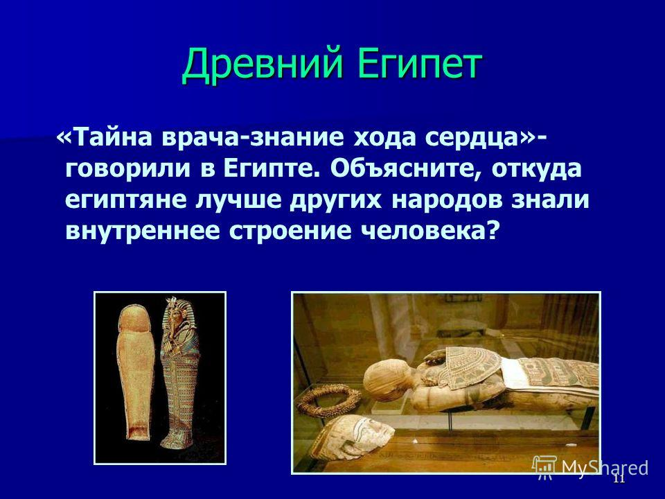 11 Древний Египет «Тайна врача-знание хода сердца»- говорили в Египте. Объясните, откуда египтяне лучше других народов знали внутреннее строение человека?