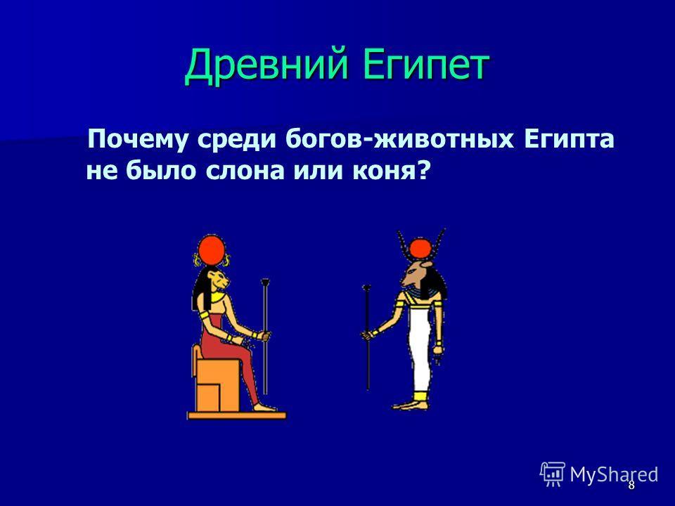 8 Древний Египет Почему среди богов-животных Египта не было слона или коня?