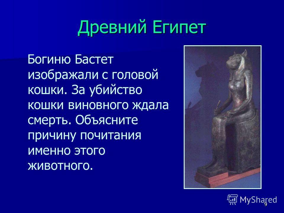 9 Древний Египет Богиню Бастет изображали с головой кошки. За убийство кошки виновного ждала смерть. Объясните причину почитания именно этого животного.