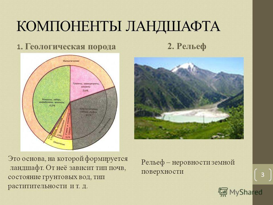 КОМПОНЕНТЫ ЛАНДШАФТА 1. Геологическая порода 2. Рельеф 3 Это основа, на которой формируется ландшафт. От неё зависит тип почв, состояние грунтовых вод, тип раститительности и т. д. Рельеф – неровности земной поверхности