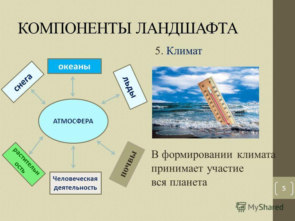 КОМПОНЕНТЫ ЛАНДШАФТА 5 5. Климат АТМОСФЕРА океаны снега льды растительн ость Человеческая деятельность почвы В формировании климата принимает участие вся планета
