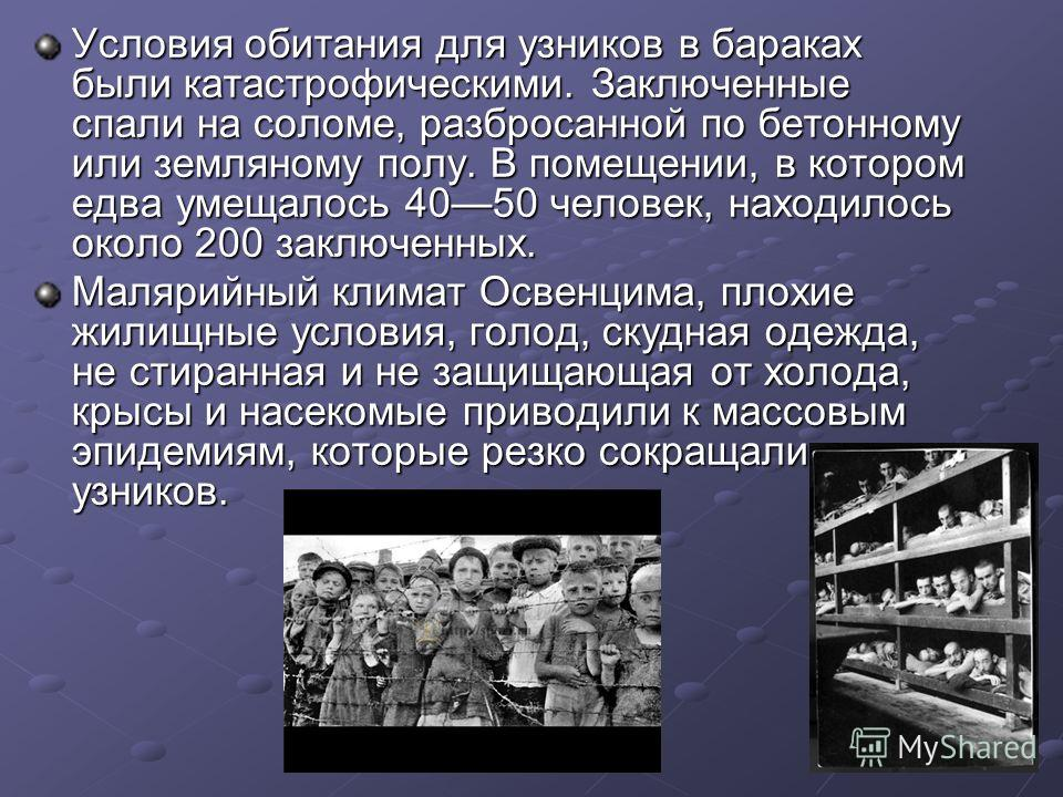 Условия обитания для узников в бараках были катастрофическими. Заключенные спали на соломе, разбросанной по бетонному или земляному полу. В помещении, в котором едва умещалось 4050 человек, находилось около 200 заключенных. Малярийный климат Освенцим