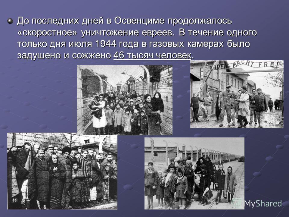 До последних дней в Освенциме продолжалось «скоростное» уничтожение евреев. В течение одного только дня июля 1944 года в газовых камерах было задушено и сожжено 46 тысяч человек.
