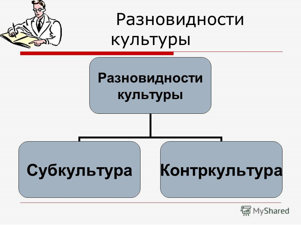 Разновидности культуры Разновидности культуры СубкультураКонтркультура