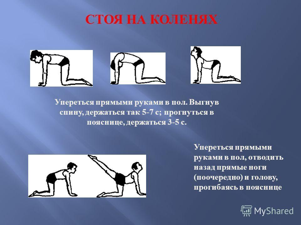 Упереться прямыми руками в пол. Выгнув спину, держаться так 5-7 с; прогнуться в пояснице, держаться 3-5 с. Упереться прямыми руками в пол, отводить назад прямые ноги (поочередно) и голову, прогибаясь в пояснице СТОЯ НА КОЛЕНЯХ