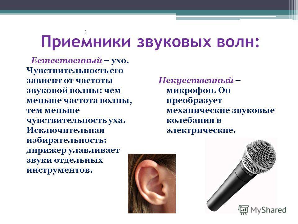 : Приемники звуковых волн: Естественный – ухо. Чувствительность его зависит от частоты звуковой волны: чем меньше частота волны, тем меньше чувствительность уха. Исключительная избирательность: дирижер улавливает звуки отдельных инструментов. Искусст