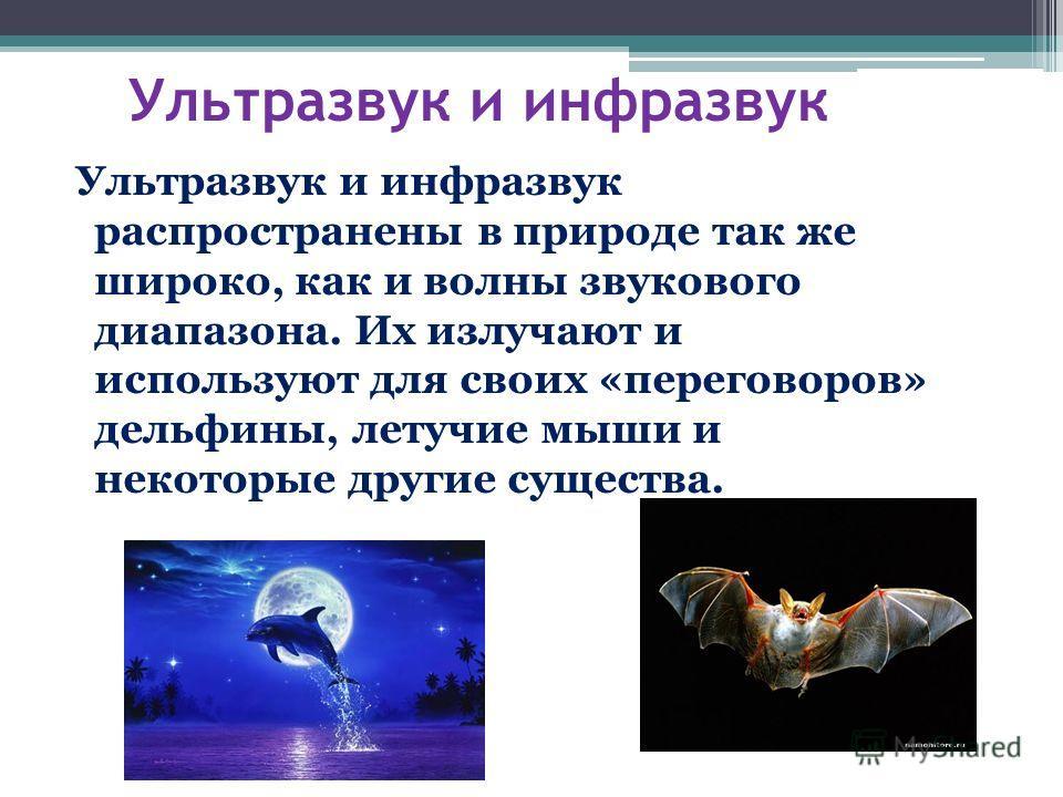 Ультразвук и инфразвук Ультразвук и инфразвук распространены в природе так же широко, как и волны звукового диапазона. Их излучают и используют для своих «переговоров» дельфины, летучие мыши и некоторые другие существа.