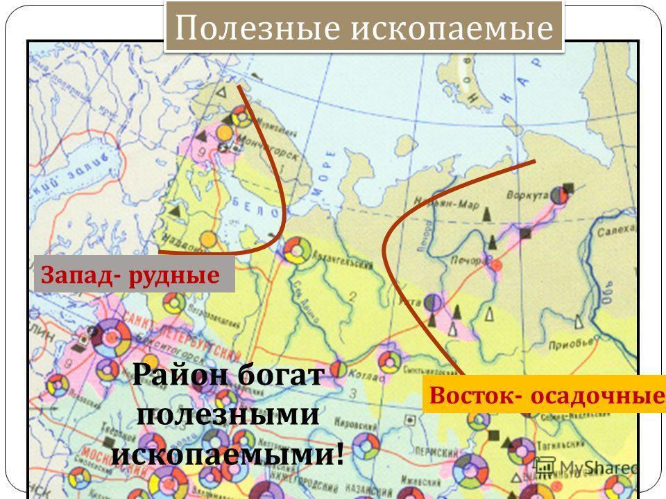 Полезные ископаемые Запад - рудные Восток - осадочные Район богат полезными ископаемыми !
