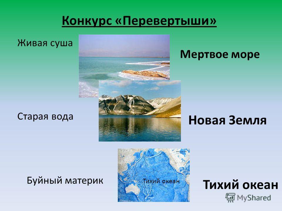Конкурс «Перевертыши» Живая суша Мертвое море Старая вода Новая Земля Буйный материк Тихий океан