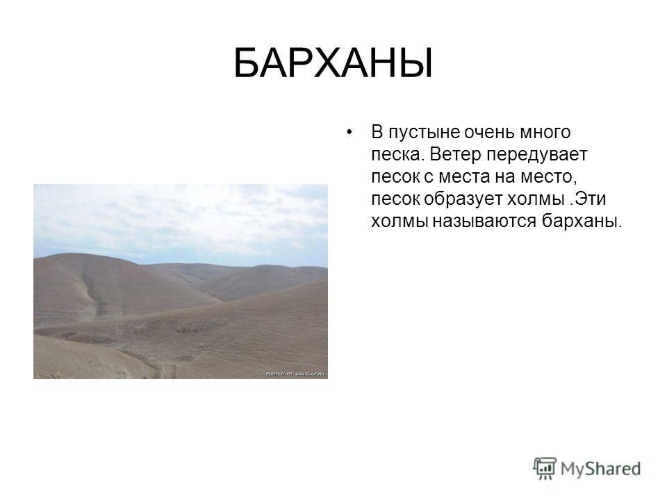 БАРХАНЫ В пустыне очень много песка. Ветер передувает песок с места на место, песок образует холмы.Эти холмы называются барханы.