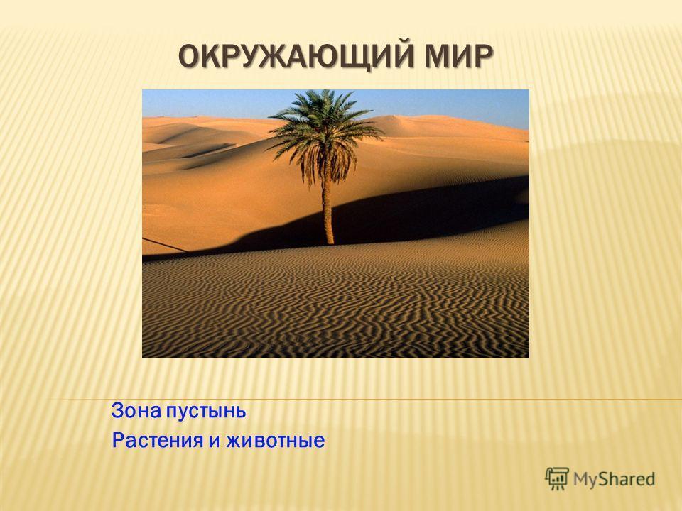 ОКРУЖАЮЩИЙ МИР Зона пустынь Растения и животные