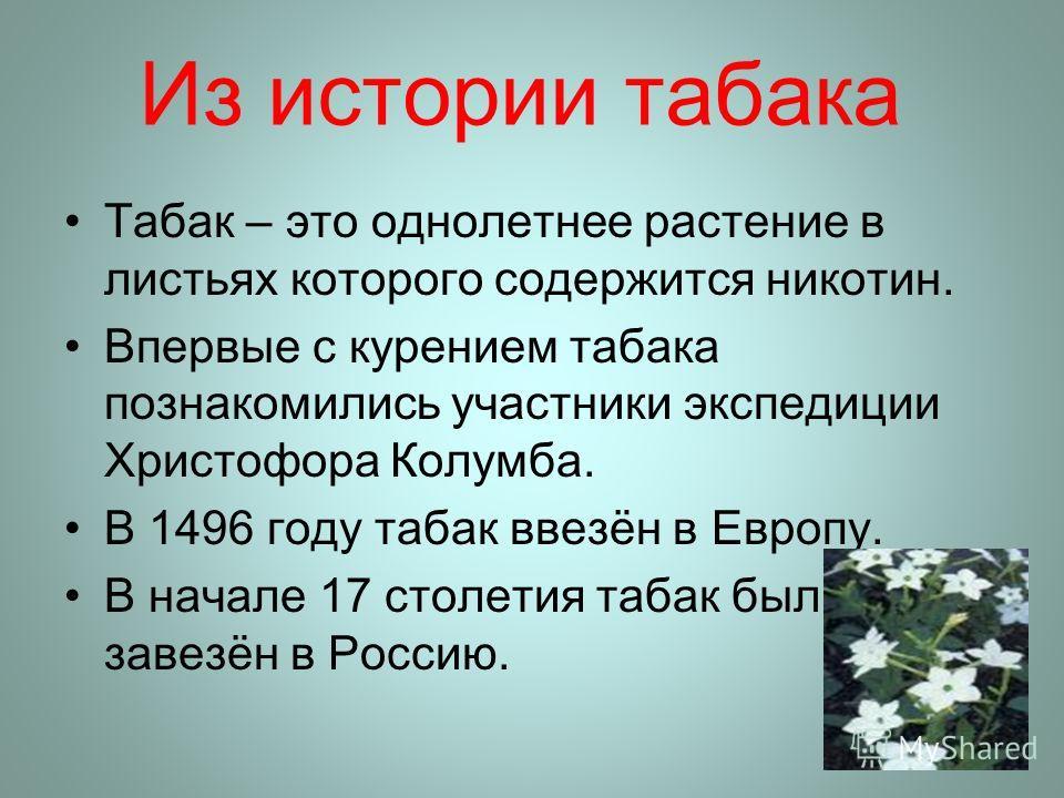 Из истории табака Табак – это однолетнее растение в листьях которого содержится никотин. Впервые с курением табака познакомились участники экспедиции Христофора Колумба. В 1496 году табак ввезён в Европу. В начале 17 столетия табак был завезён в Росс