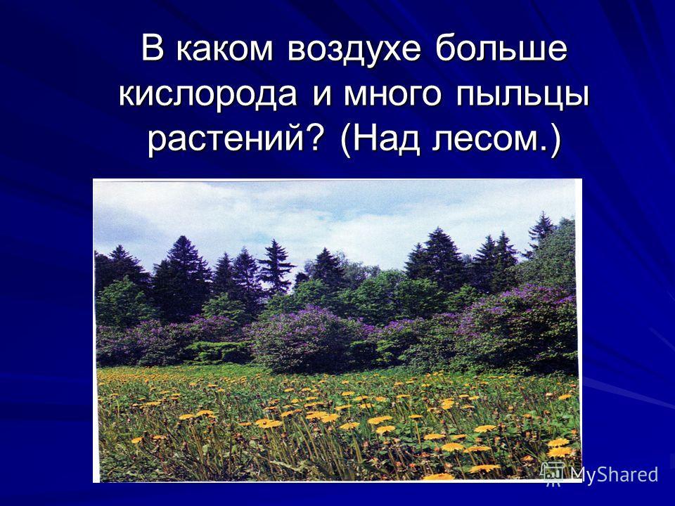 В каком воздухе больше кислорода и много пыльцы растений? (Над лесом.)