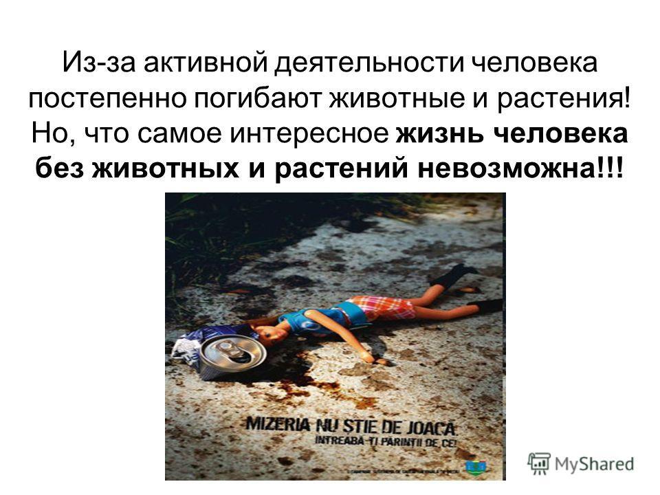 Из-за активной деятельности человека постепенно погибают животные и растения! Но, что самое интересное жизнь человека без животных и растений невозможна!!!