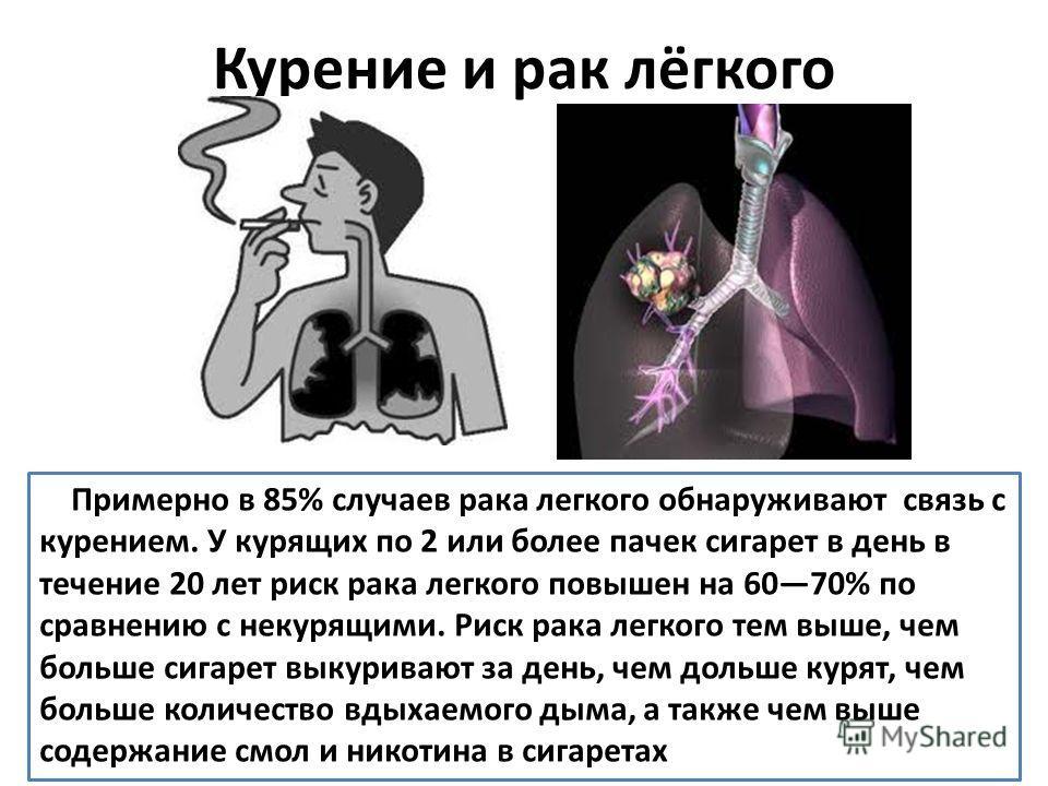 Примерно в 85% случаев рака легкого обнаруживают связь с курением. У курящих по 2 или более пачек сигарет в день в течение 20 лет риск рака легкого повышен на 6070% по сравнению с некурящими. Риск рака легкого тем выше, чем больше сигарет выкуривают