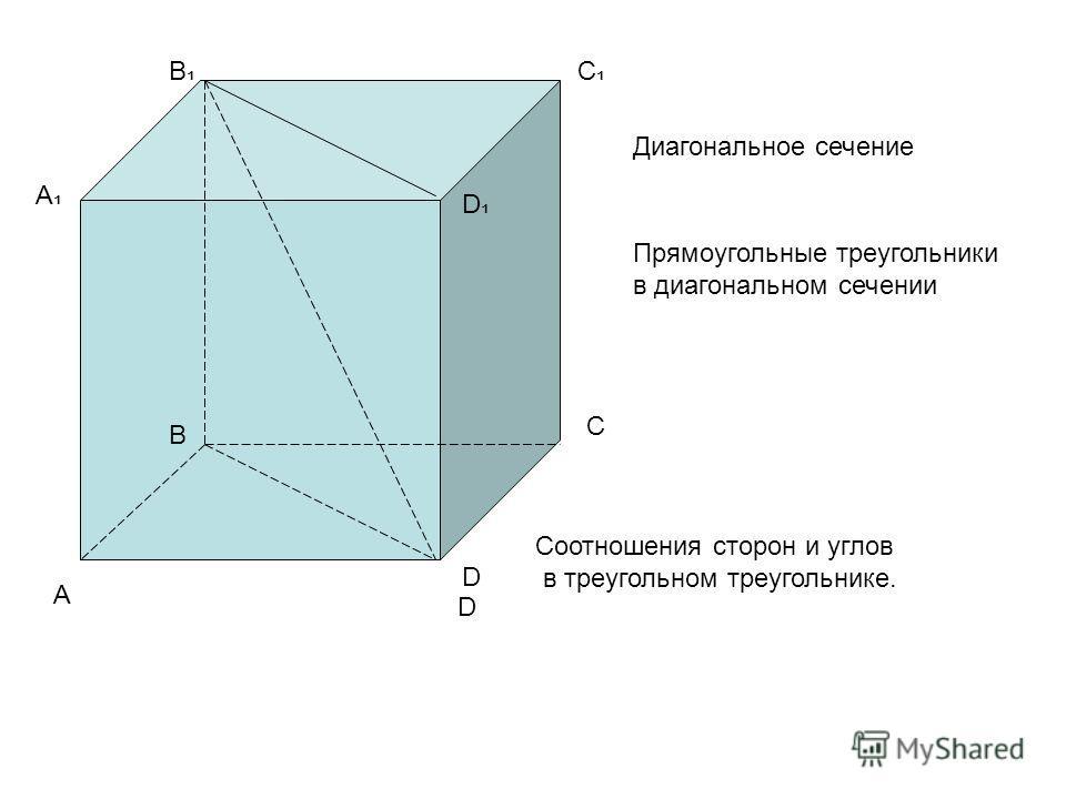 А В С D D А В С D Диагональное сечение Прямоугольные треугольники в диагональном сечении Соотношения сторон и углов в треугольном треугольнике.