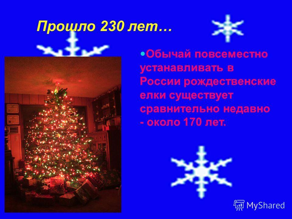 Прошло 230 лет… Обычай повсеместно устанавливать в России рождественские елки существует сравнительно недавно - около 170 лет.