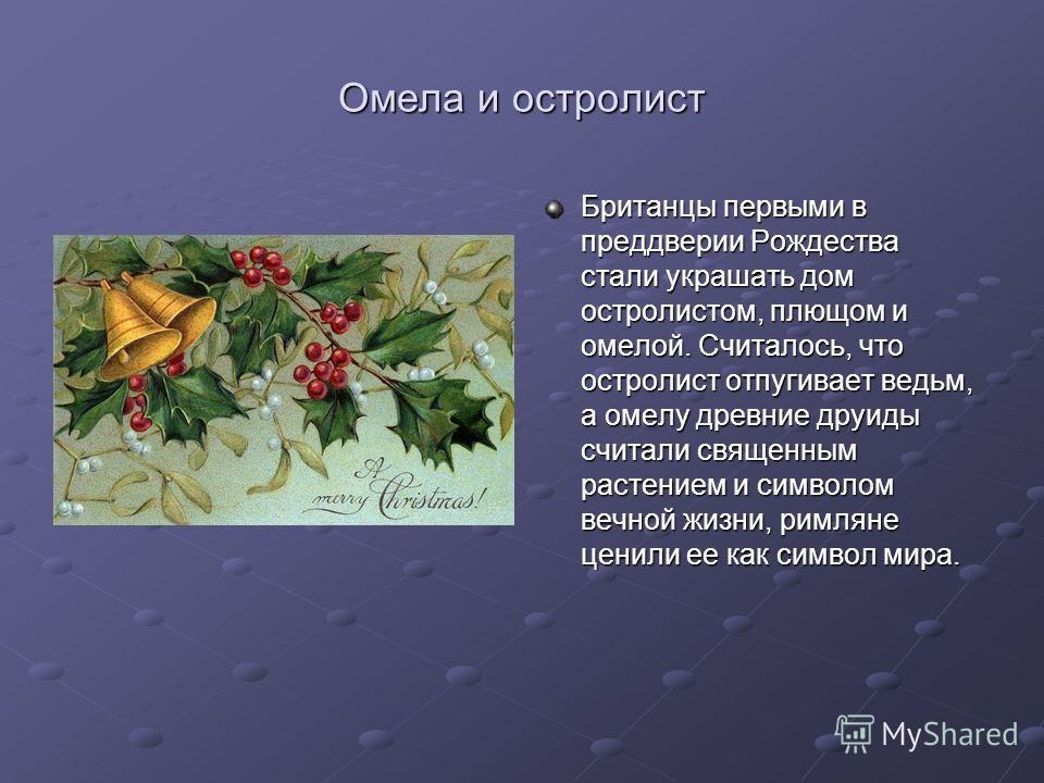 Омела и остролист Британцы первыми в преддверии Рождества стали украшать дом остролистом, плющом и омелой. Считалось, что остролист отпугивает ведьм, а омелу древние друиды считали священным растением и символом вечной жизни, римляне ценили ее как си