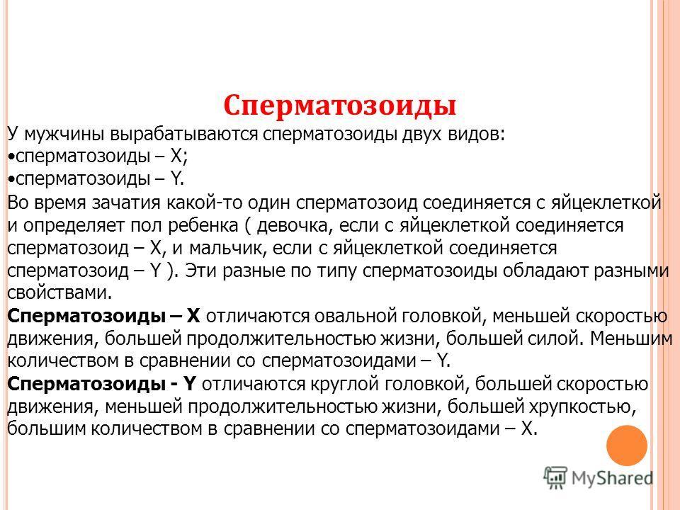 srednyaya-prodolzhitelnost-zhizni-spermatozoida